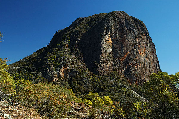 Bluff Mountain, Warrumbungle NP, около городка Coonabarabran, NSW, Австралия
